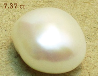 Pearl 7.37ct